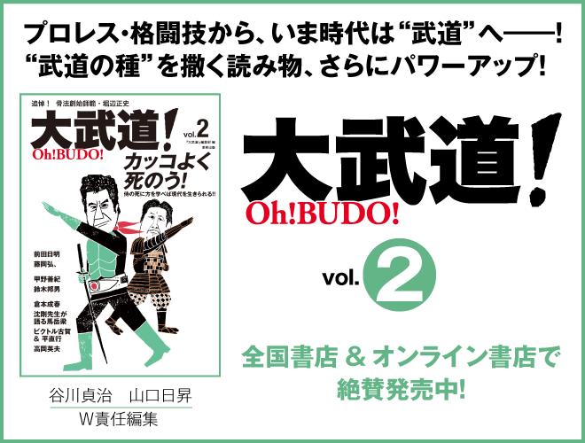 大武道!vol.2